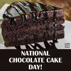 Happy National Chocolate Cake Day